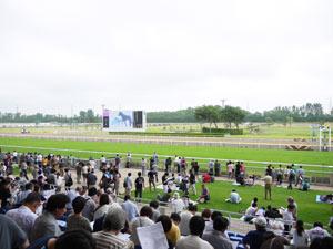 レース観戦をする人々