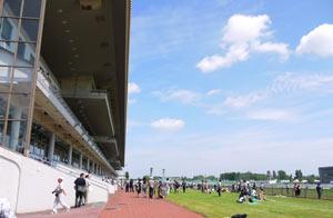 札幌競馬場のスタンド前で